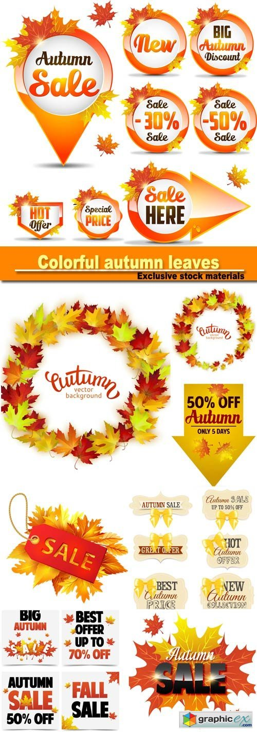 colorful autumn leaves, card template, discount tag with fall leaves