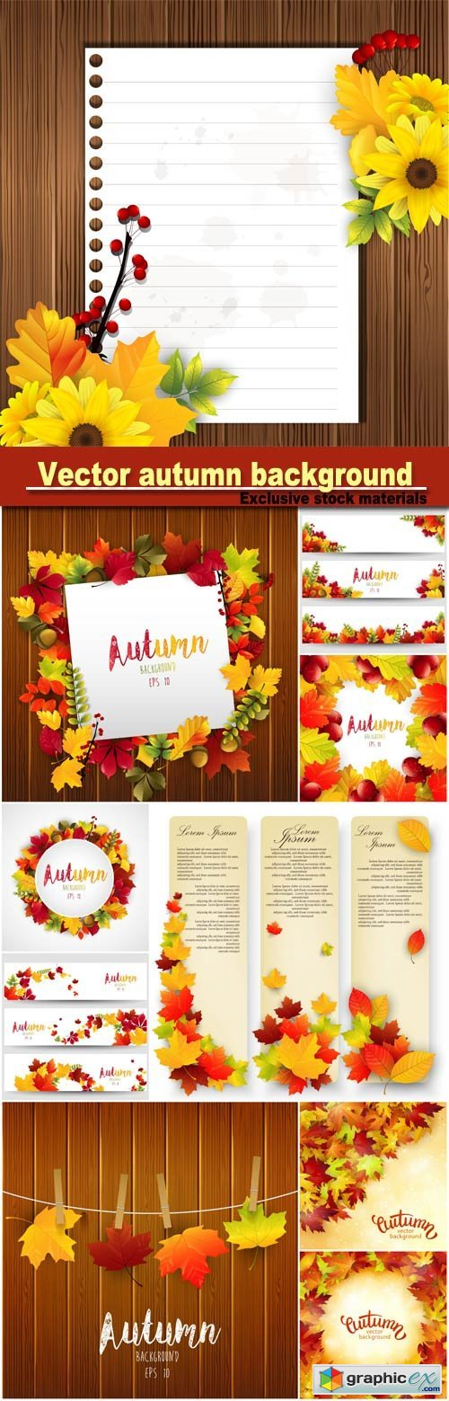background with colorful autumn leaves, card template, natural background