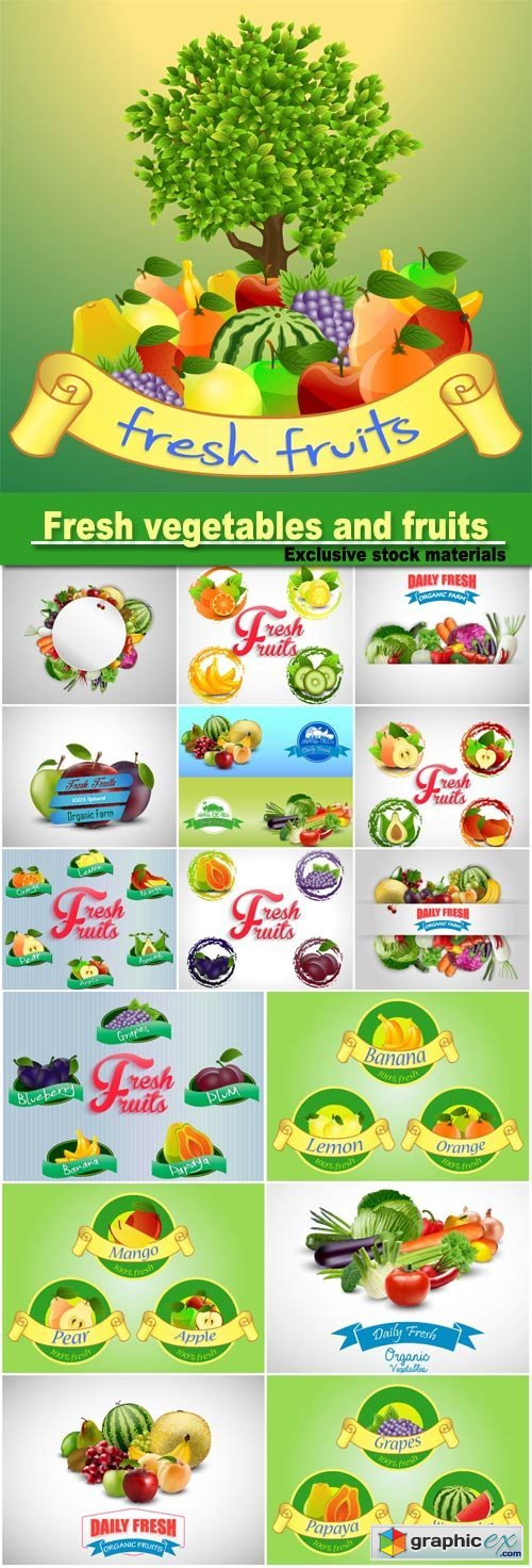 Fresh vegetables and fruits in a vector, backgrounds and stickers