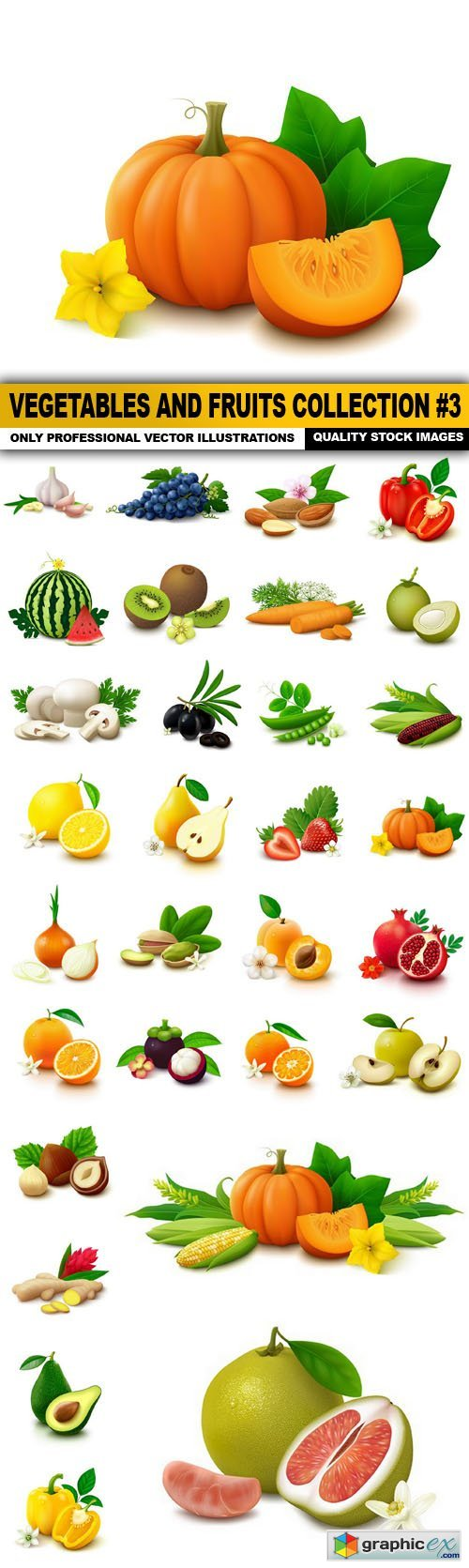 Vegetables And Fruits Collection #3 - 30 Vector