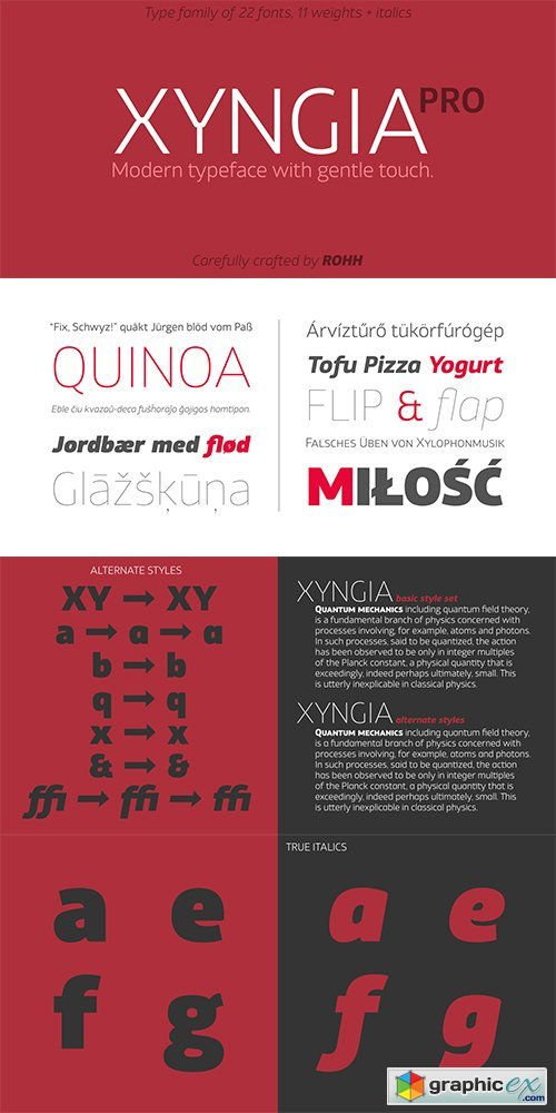 Xyngia Font Family - 22 FONTS
