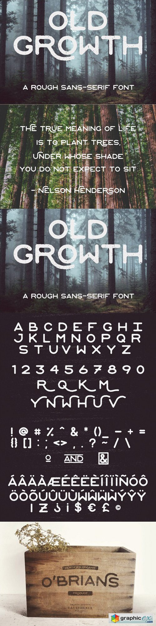 Old Growth font