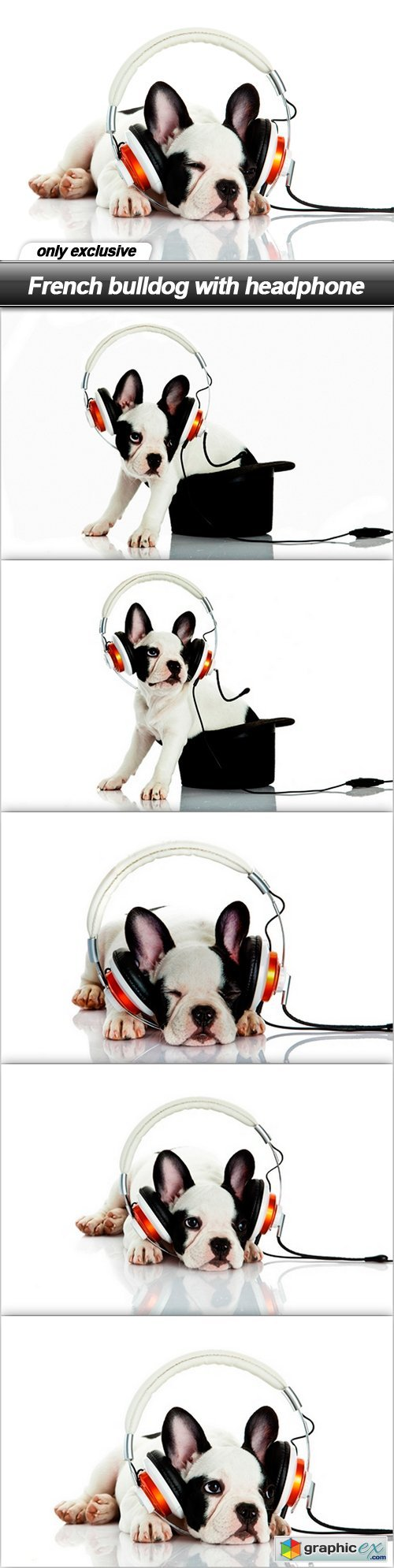 French bulldog with headphone - 6 UHQ JPEG