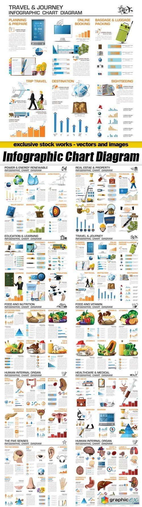 Infographic Chart Diagram - 10xEPS