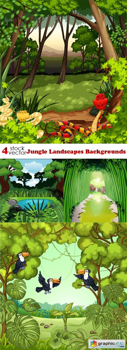 Jungle Landscapes Backgrounds