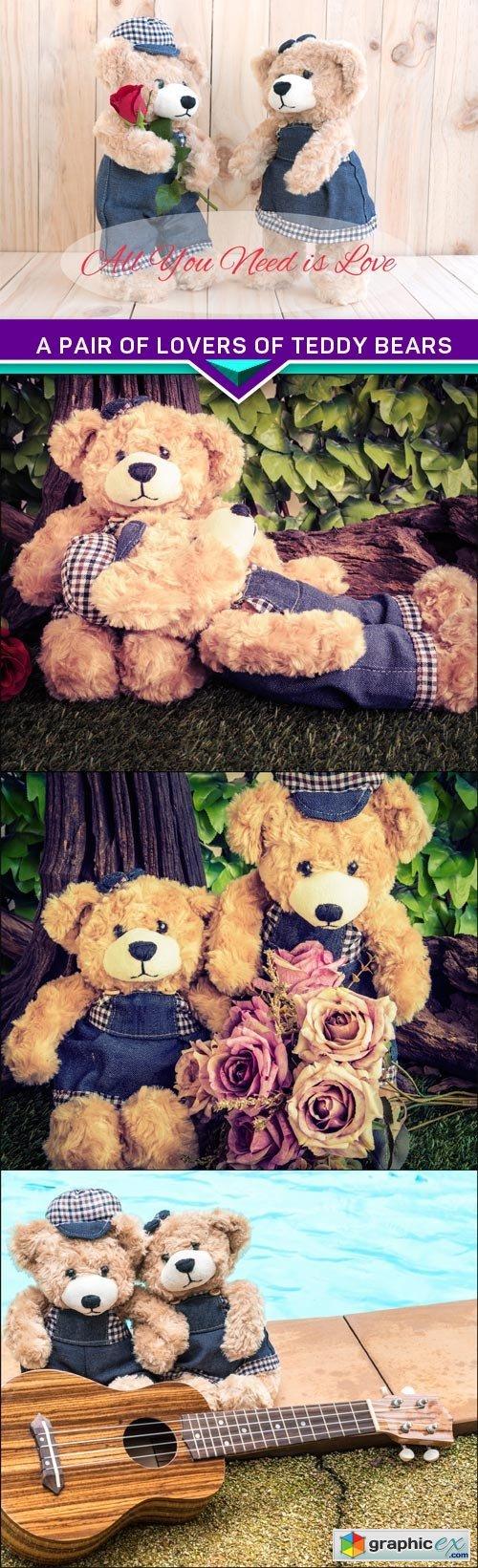 A pair of lovers of teddy bears 4X JPEG