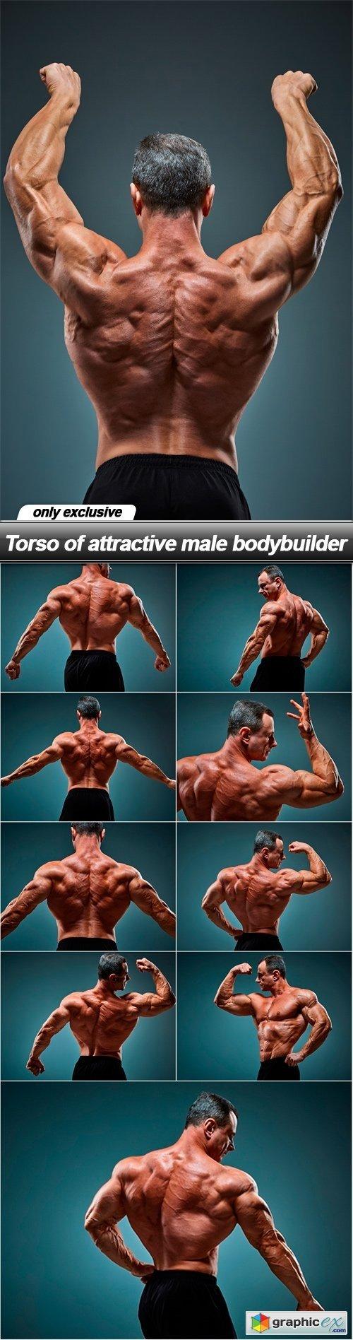 Torso of attractive male bodybuilder - 10 UHQ JPEG