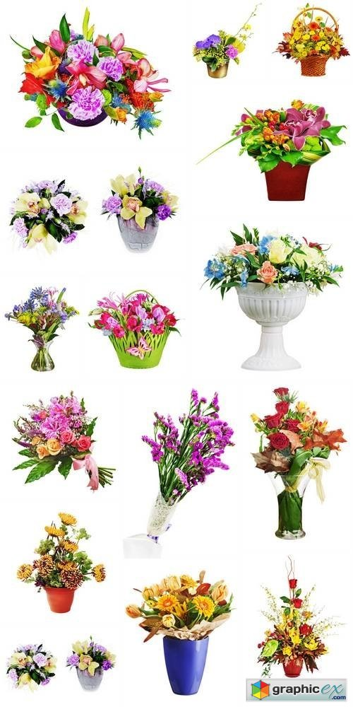 Colorful Flower Bouquet Isolated