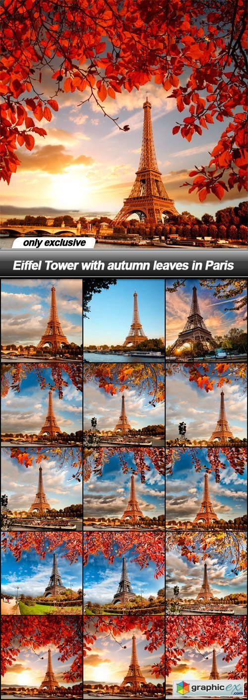 Eiffel Tower with autumn leaves in Paris - 15 UHQ JPEG