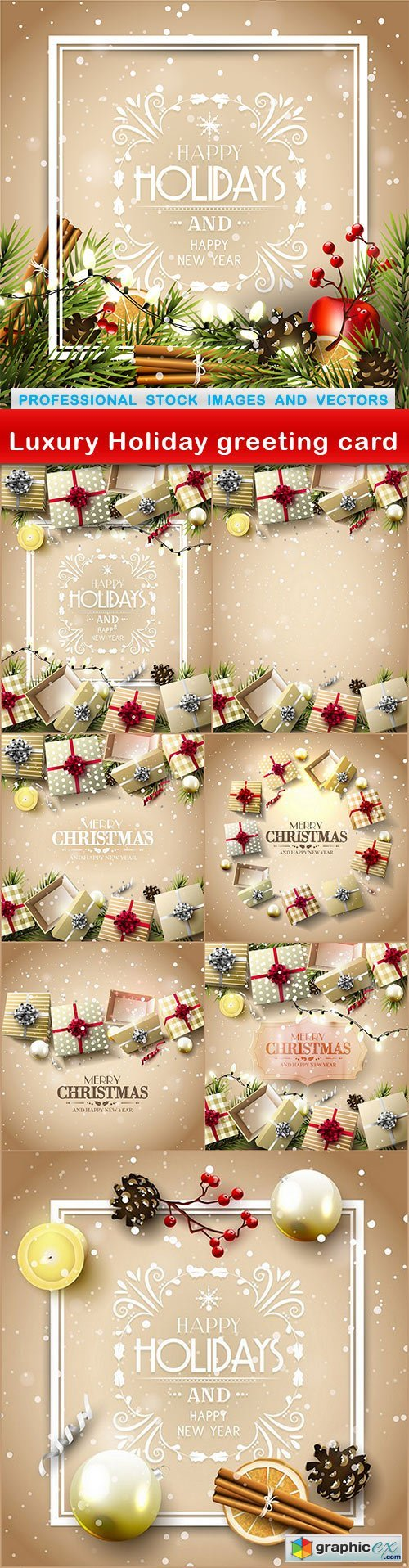 Luxury Holiday greeting card - 8 EPS
