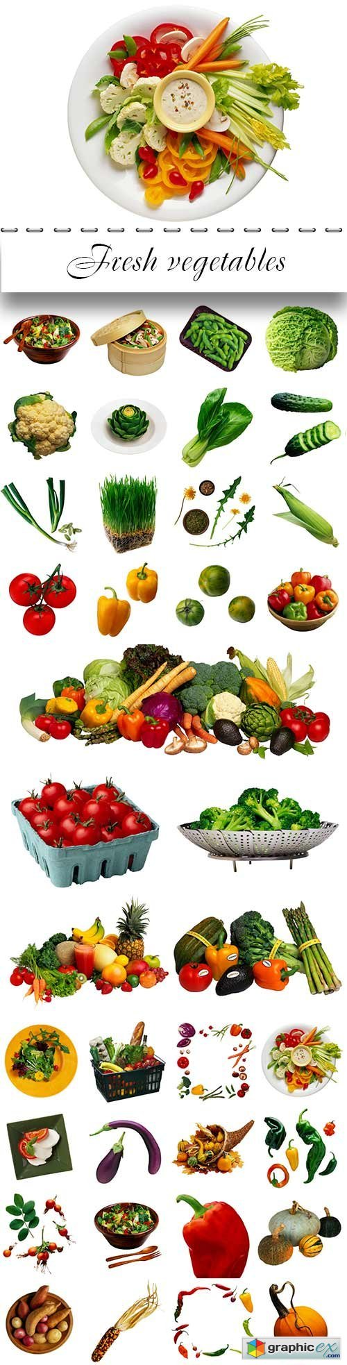 Fresh vegetables proper nutrition