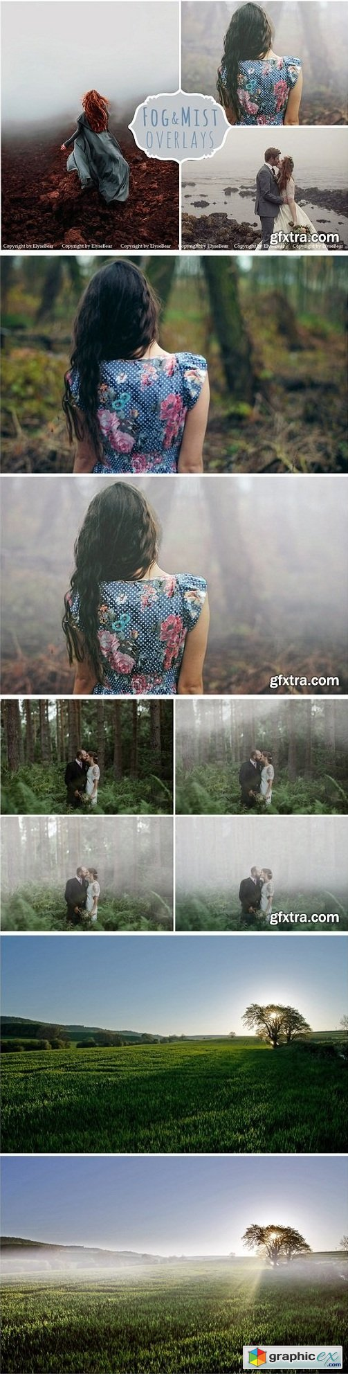 Fog Photoshop Overlays & Brushes » Free Download Vector Stock Image