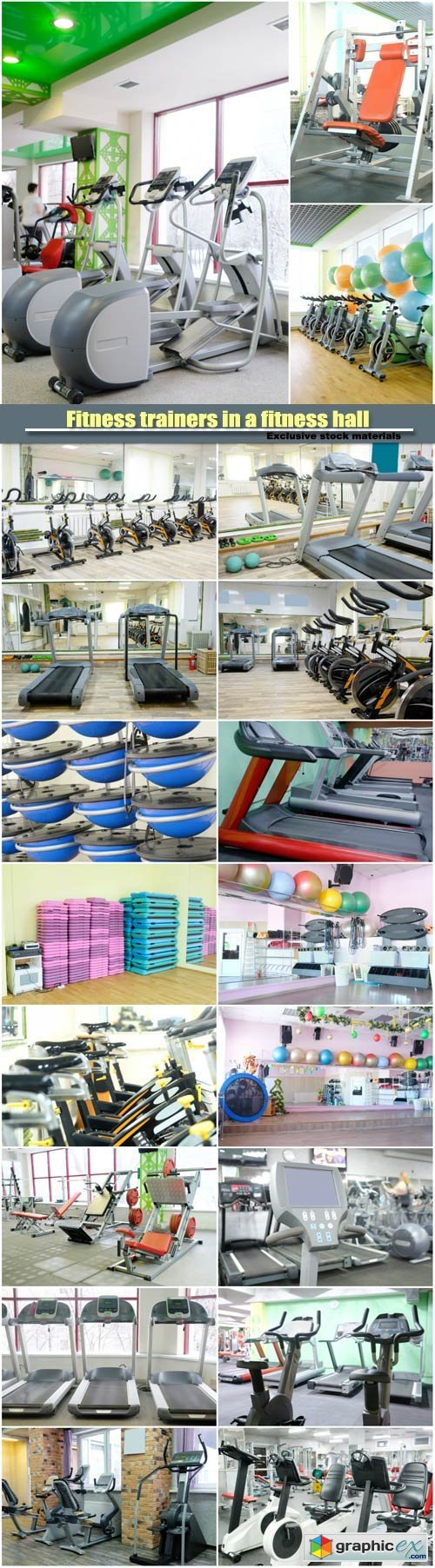 Fitness trainers in a fitness hall