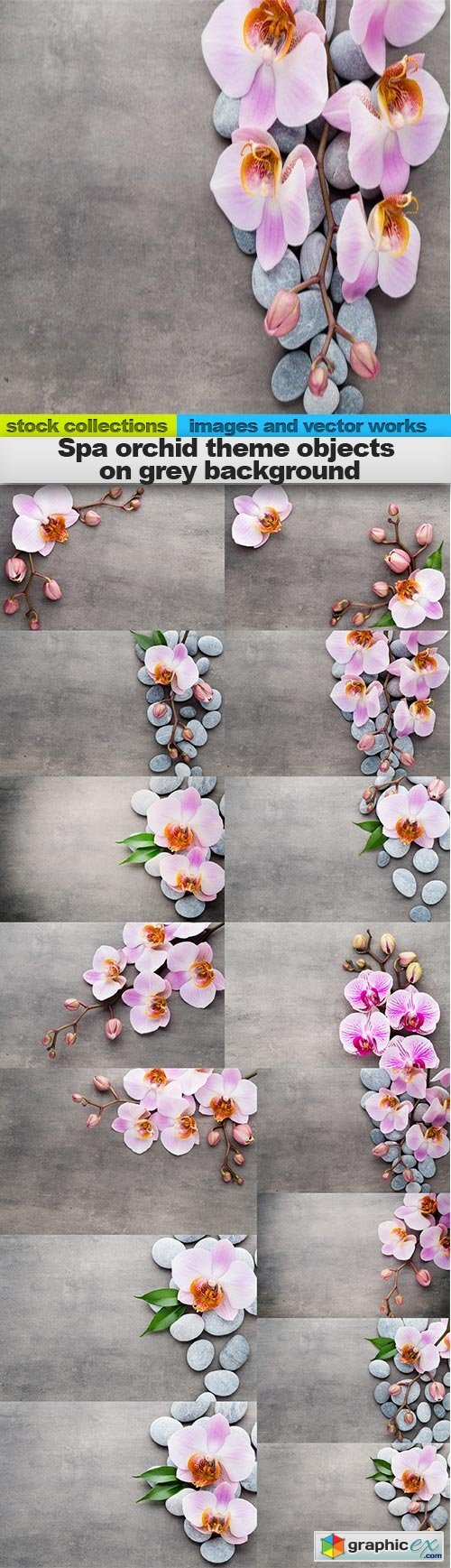 Spa orchid theme objects on grey background, 15 x EPS