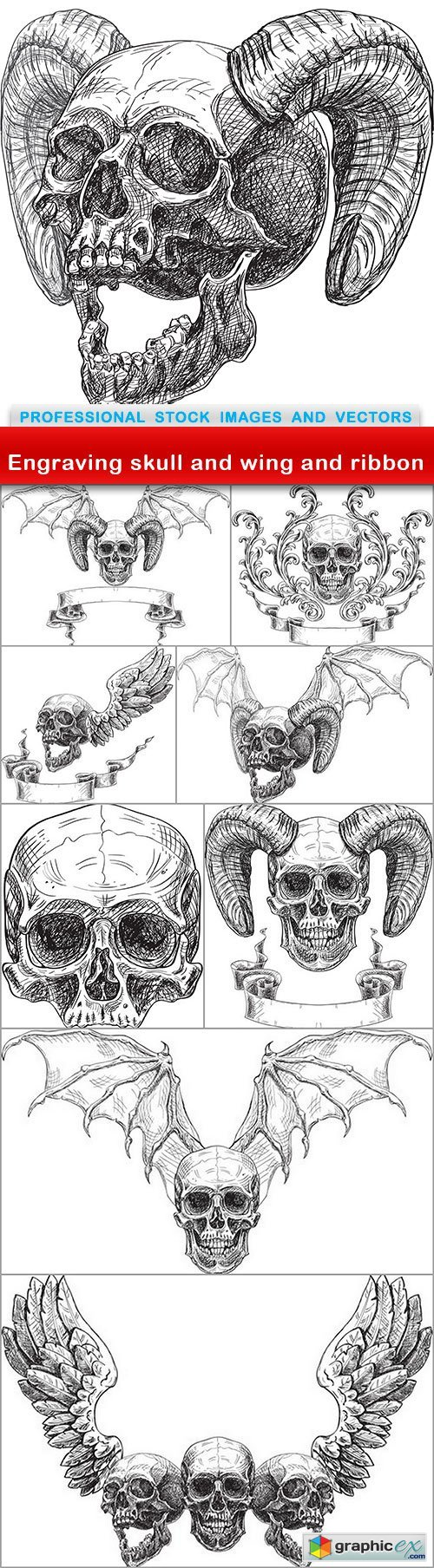 Engraving skull and wing and ribbon - 9 EPS
