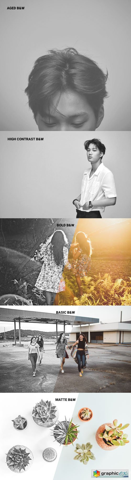 Classy Set Black & White Photoshop Actions