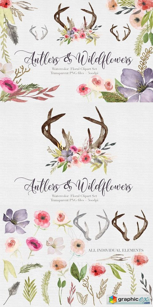 Antlers & flowers Watercolor Clipart