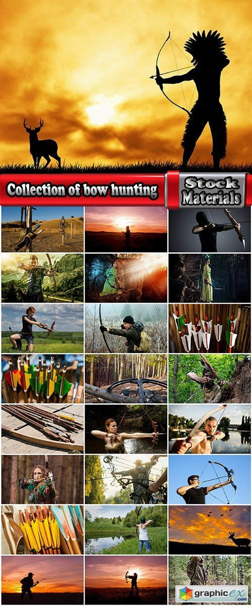 Collection of bow hunting hunter forest production arrow bowstring prey 25 HQ Jpeg