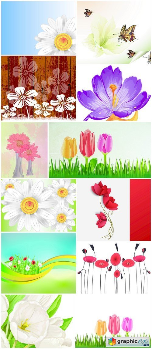 Flowers nature background 12X JPEG