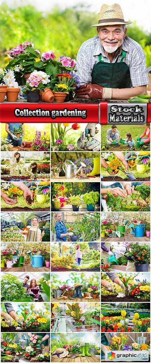 Collection gardening garden plants garden agriculture spring planting in the ground 25 HQ Jpeg