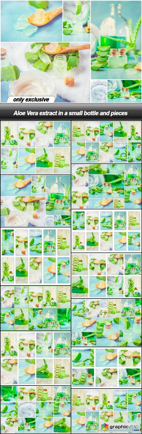 Aloe Vera extract in a small bottle and pieces - 13 UHQ JPEG