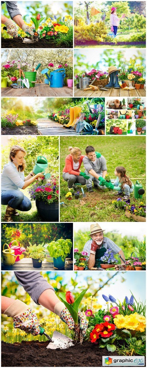 Planting flowers in a garden 11X JPEG