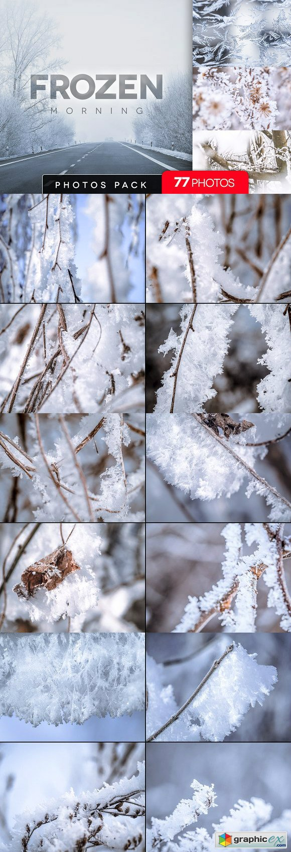 Frozen morning bundle 77pics