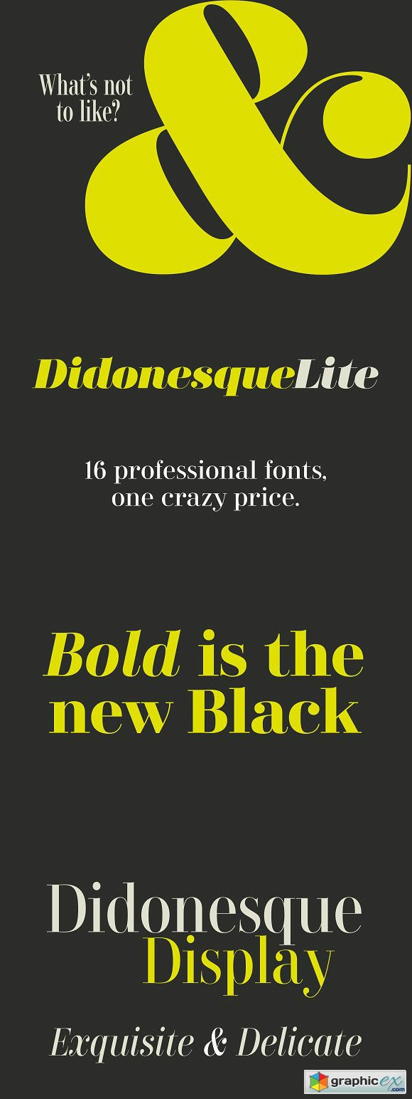 Didonesque Lite - 16-font family