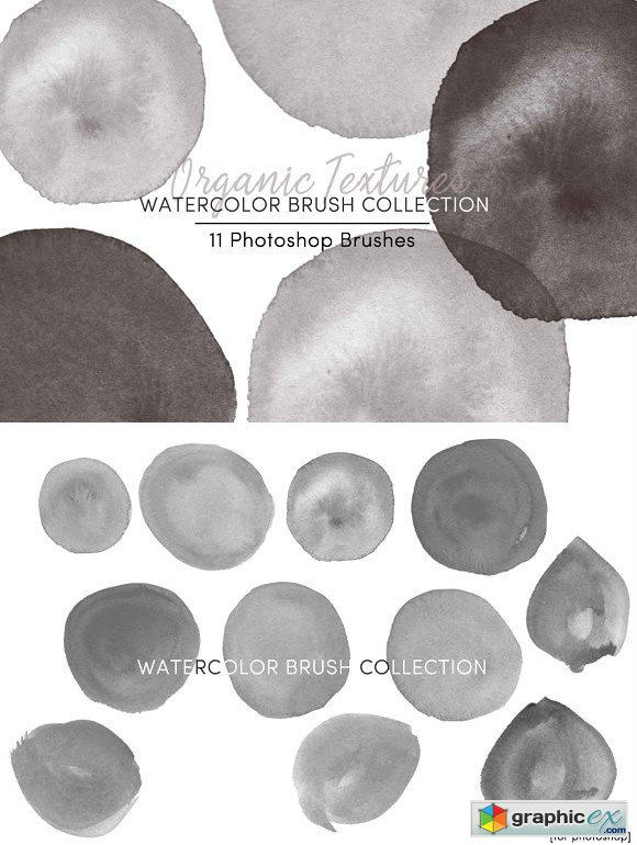 Organic Textures Watercolor Brushes