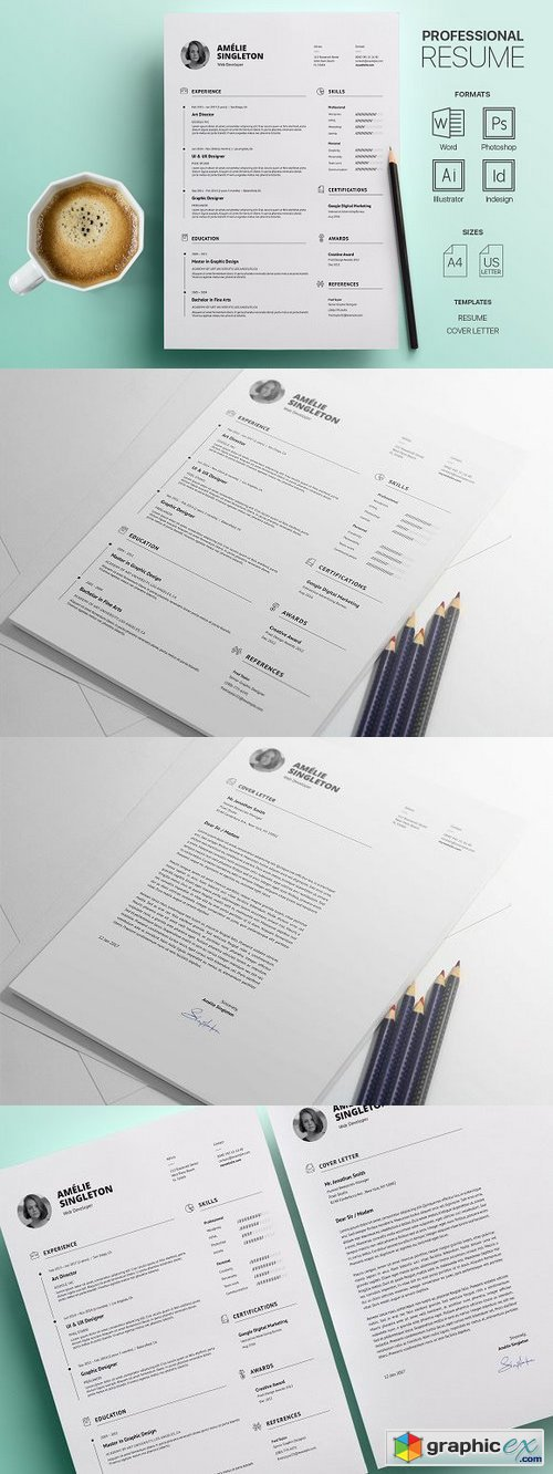 Professional Resume Template 1185191