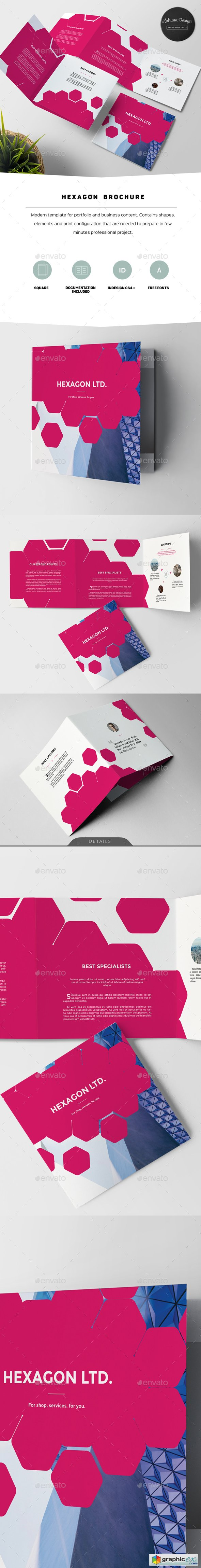 Hexagon Modern Brochure