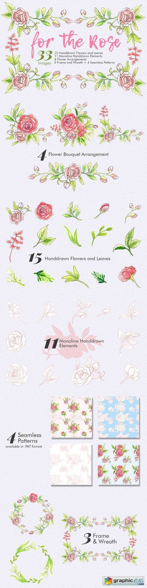 For The Rose - Handdrawn Flowers
