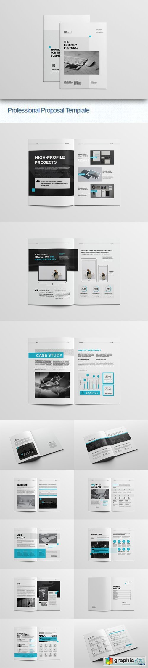 Professional Proposal Indesign [INDD/IDML] Template » Free Download ...