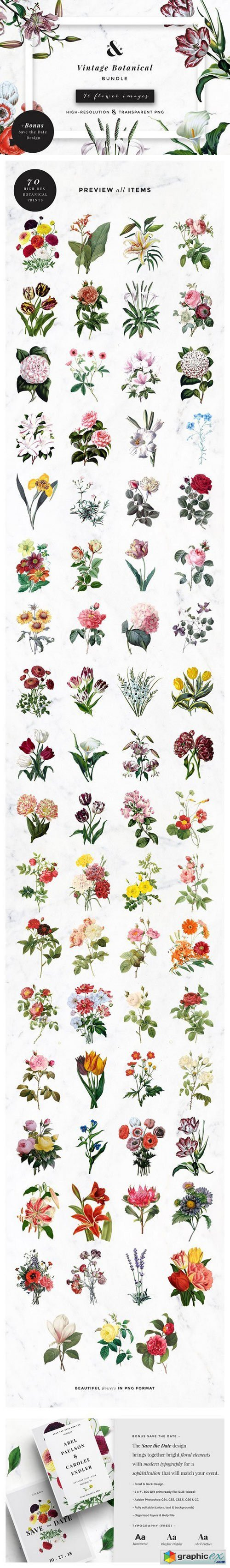 Vintage Botanical Bundle