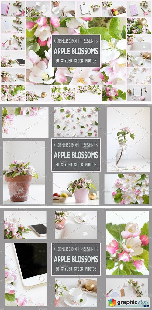 Apple Blossom Styled Photo Bundle
