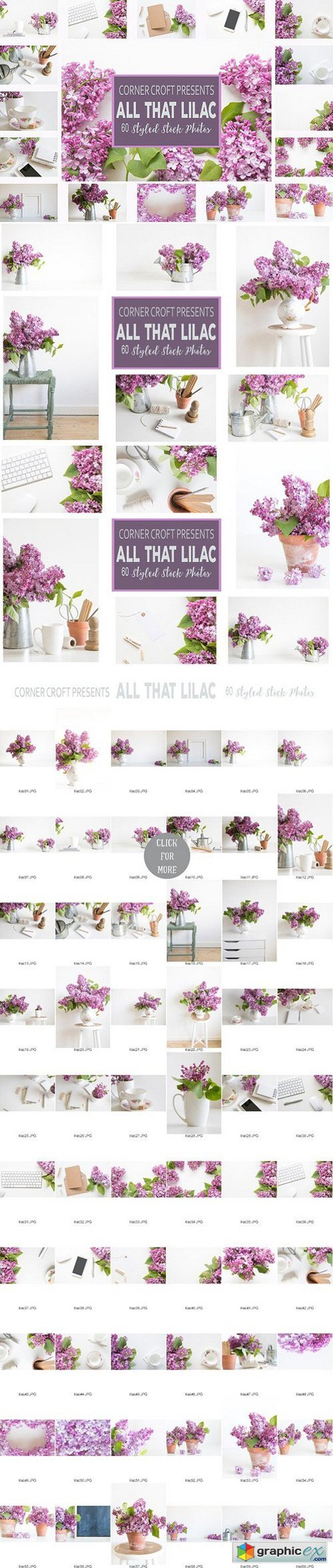 Lilac Styled Stock Photo Bundle
