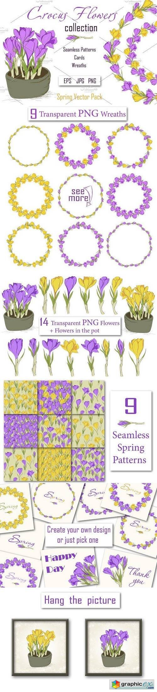 Crocus. Spring Flowers collection