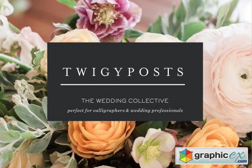Ultimate Wedding Stock Photo Bundle