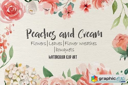 Peaches and Cream Flower Design Set » Free Download Vector Stock