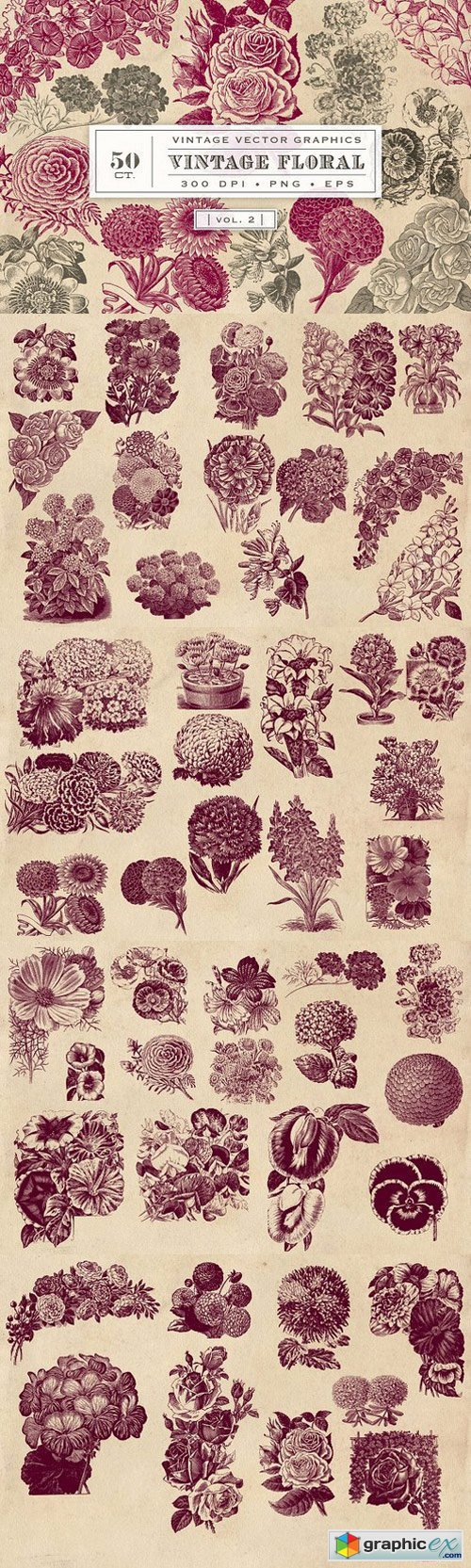 Vintage Flower Vector Graphics 2