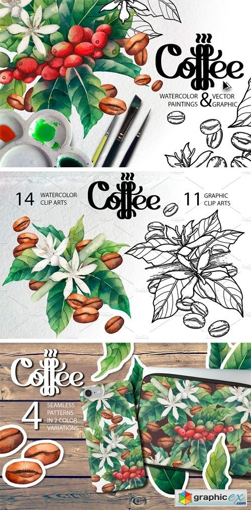 Watercolor and Graphic Coffee Plants