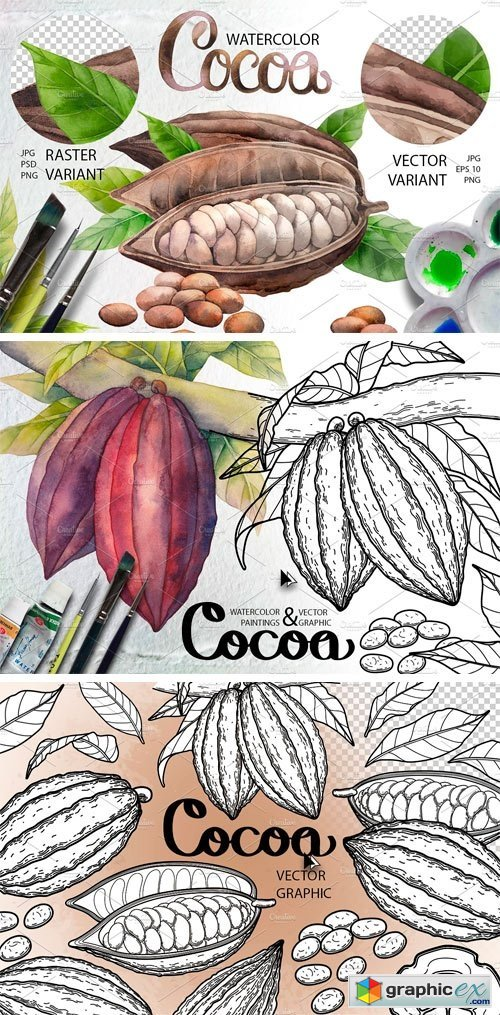 Watercolor and Graphic Cocoa Plants