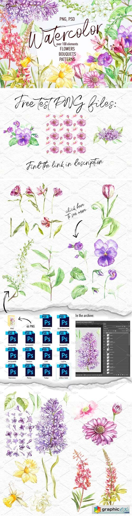 Watercolor Spring Flowers Free Download Vector Stock Image