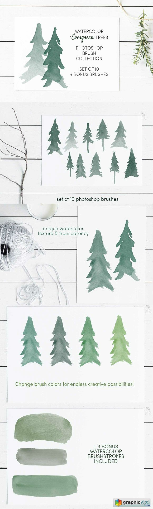Watercolor Evergreen Trees Brush Set