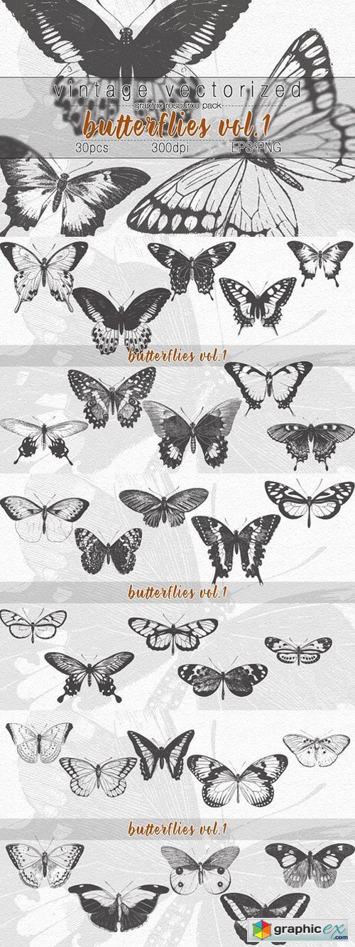 VintageVectorized-Butterfly Clipart