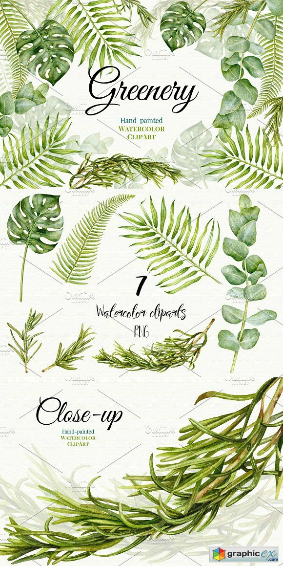 Wedding Watercolor Greenery