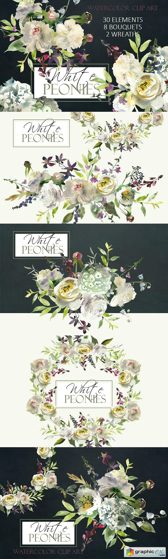 Watercolor White Flowers Clipart
