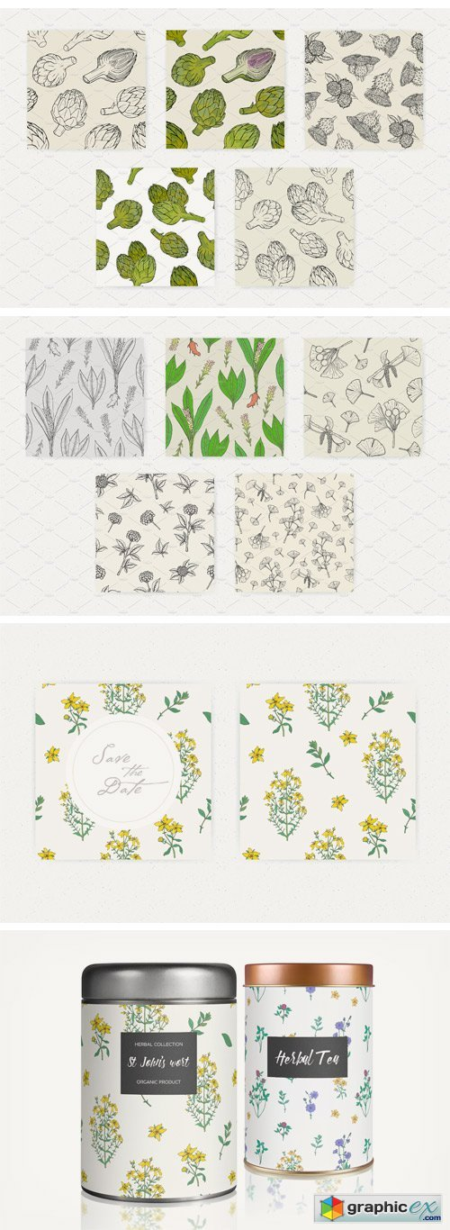Seamless Patterns of Herbs and Plant
