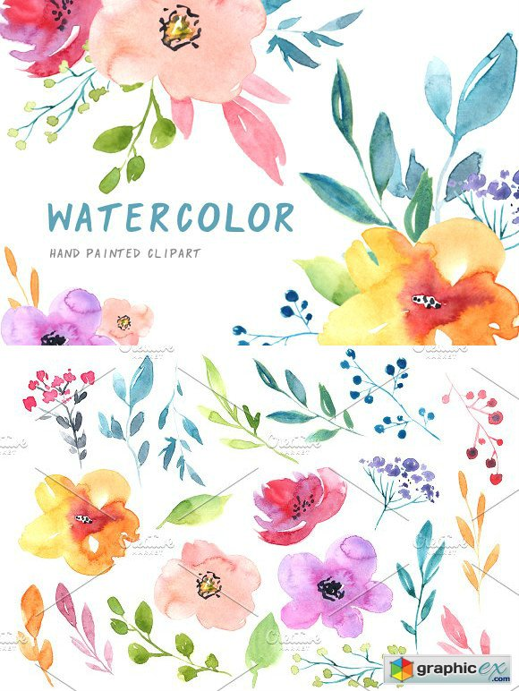 Watercolour flowers branches leaves