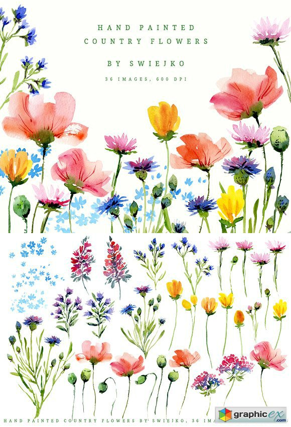 Hand painted country flowers